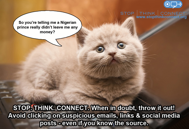 Meme of a cat saying the Nigerian prince didn't really leave money?